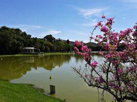 O Circuito das Águas mineiro III – Parque das Águas de São Lourenço
