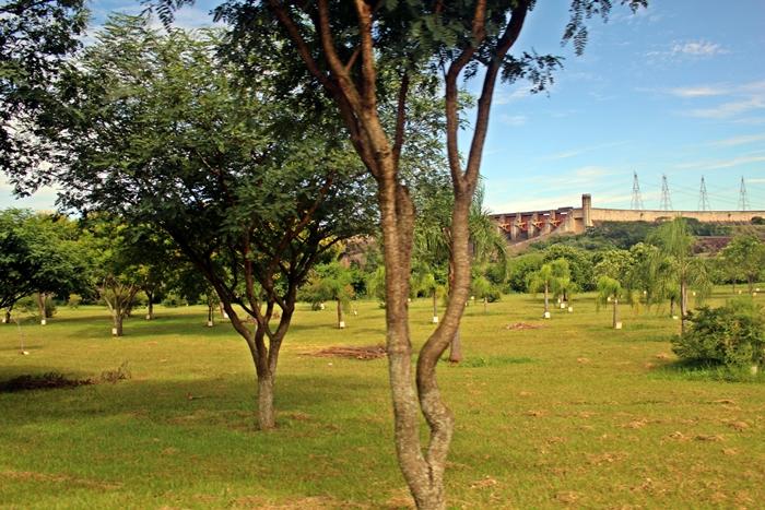 Bosque dos Trabalhadores, em Itaipu Binacional. Cada trabalhador que se aposenta ou faz 30 anos de Itaipu planta uma árvore.