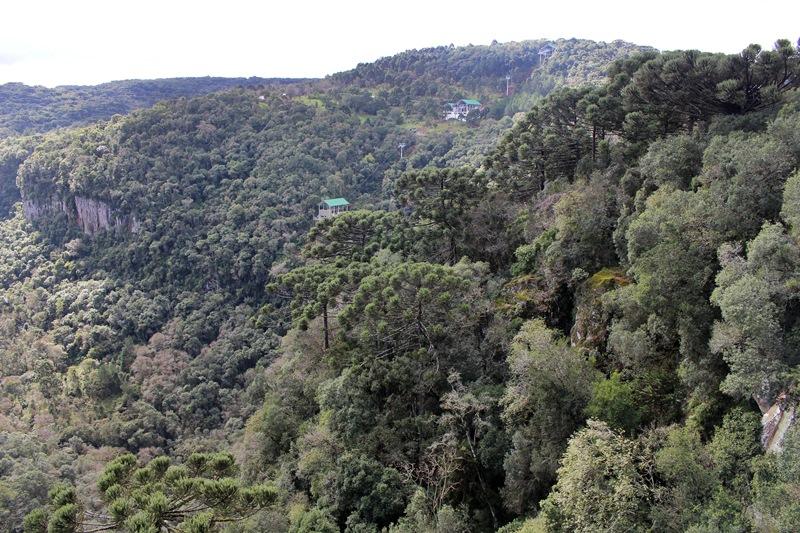 Bondinhos aéreos vistos do Parque Estadual do Caracol