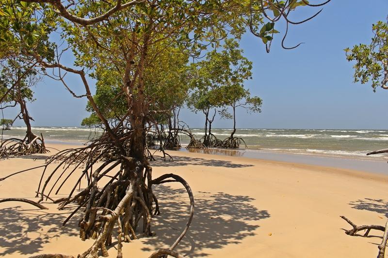 praia deserta