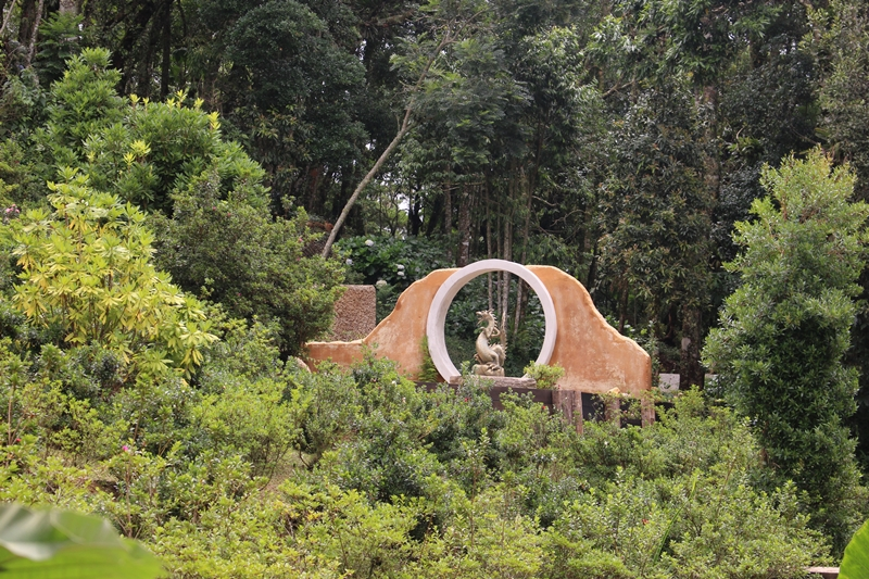Jardim Chinês visto de longe