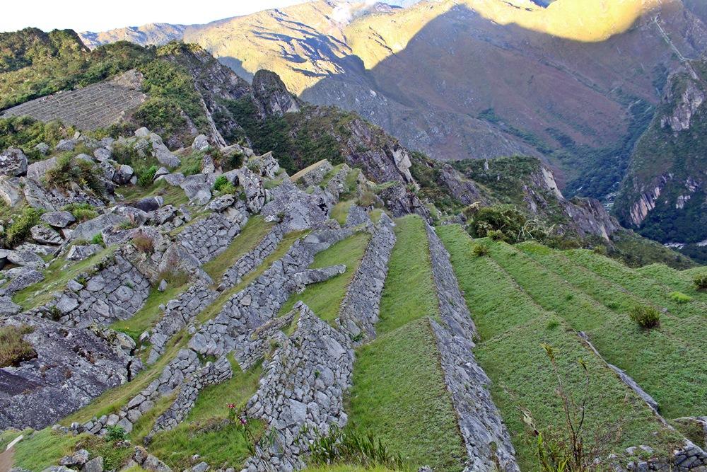 terrazas agricolas machu picchu - vista do templo principal