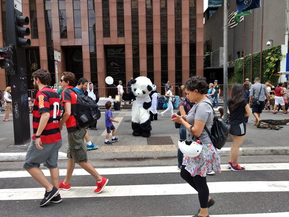 Panda, na Paulista Aberta.