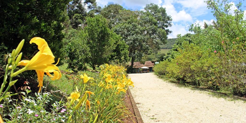 Trilha cercada por flores na Fazenda Santa Marina, em Minas Gerais.