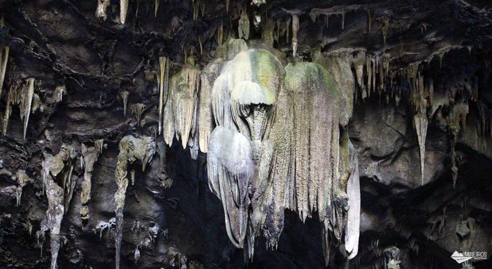 A Gruta do Lago Azul é o atrativo mais visitado de Bonito. Após uma pequena caminhada, é preciso descer 300 degraus para avistar um incrível lago azul, dentro da caverna!