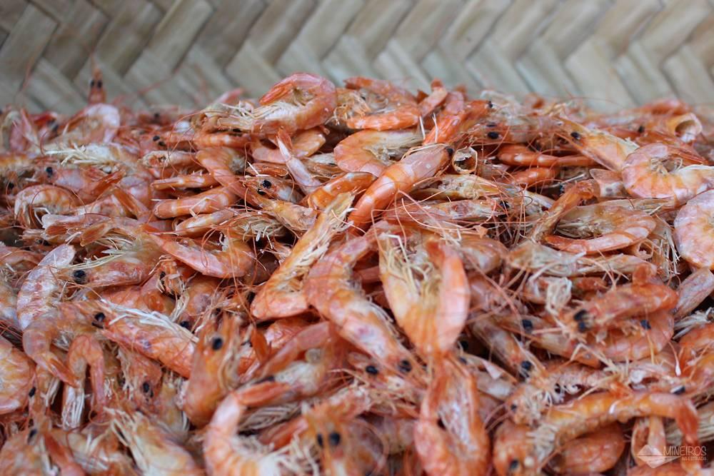 City tour São Luís - mercado