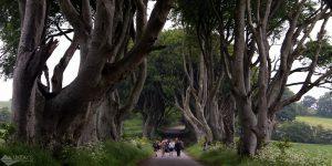 Irlanda do Norte: tour pelos cenários de Game of Thrones, Calçada dos Gigantes e Carrick-a-Rede