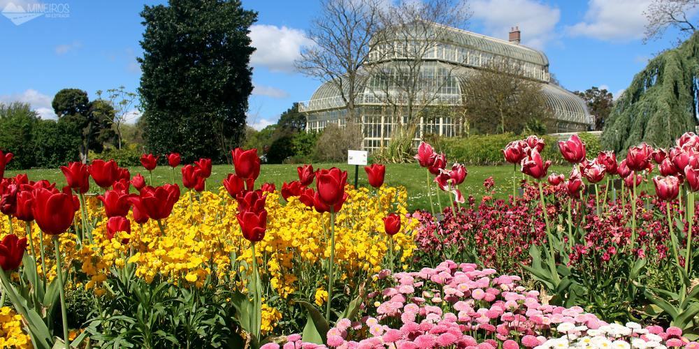 Intercâmbio na Irlanda: o que esperar da primavera e do verão em Dublin