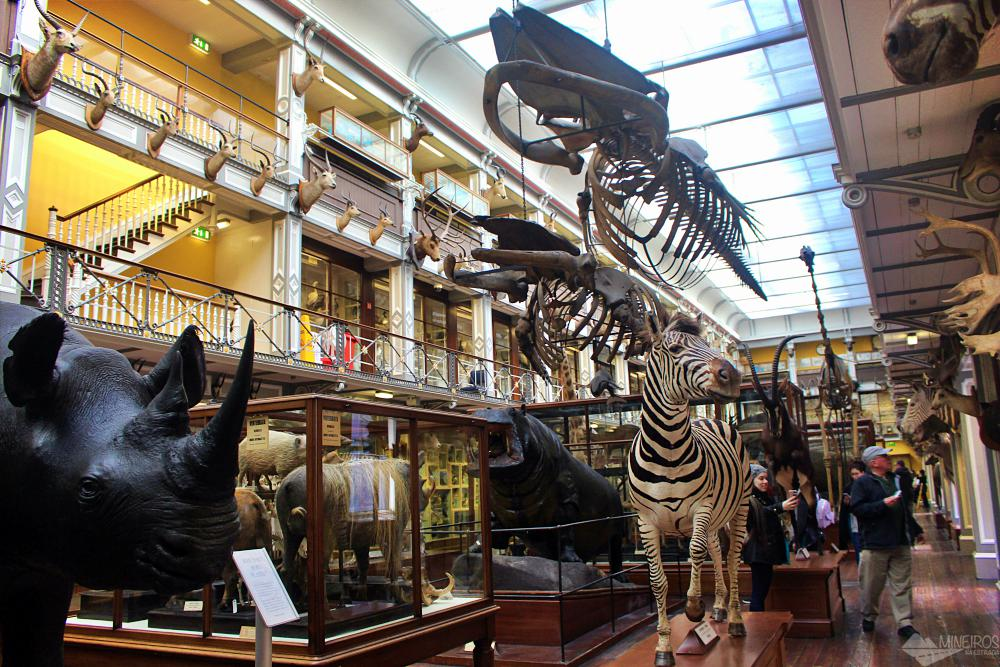 Museu de História Natural de Dublin