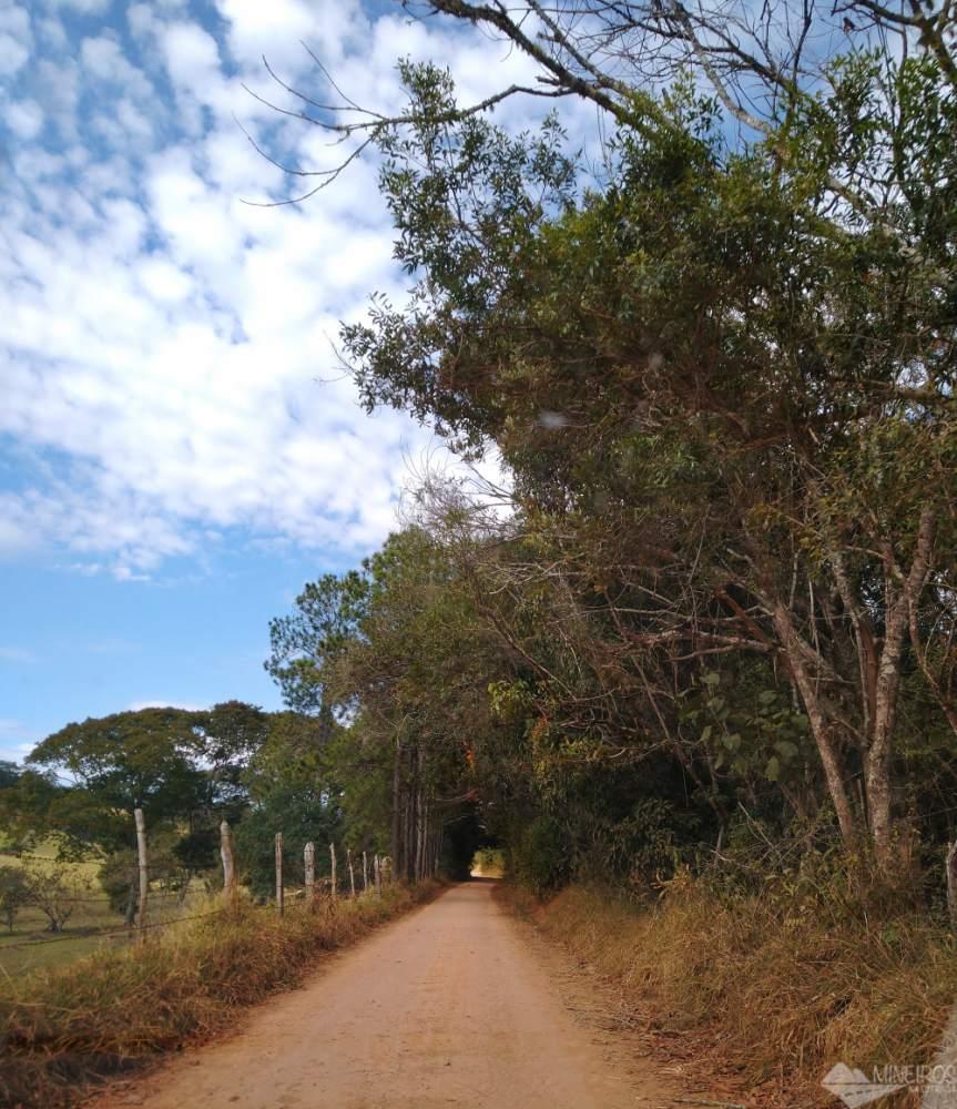 Estrada Real entre São Lourenço e Caxambu