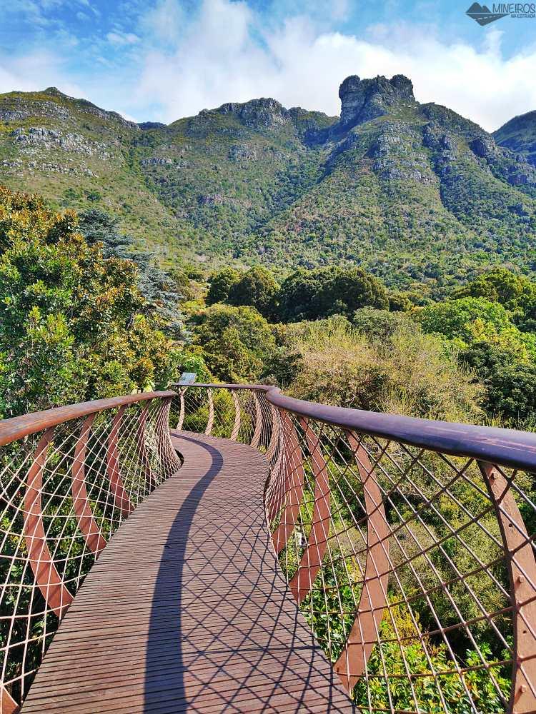 Kirstenbosch National Botanical Garden, na Cidade do Cabo
