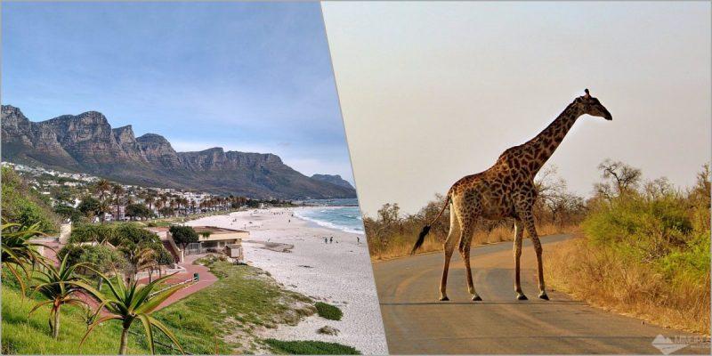 Roteiro de 14 dias pela África do Sul: como fizemos e dicas para montar o seu