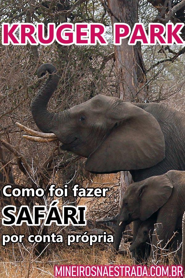 Veja neste post como foi nosso primeiro dia fazendo safári por conta própria no Kruger National Park, na África do Sul.