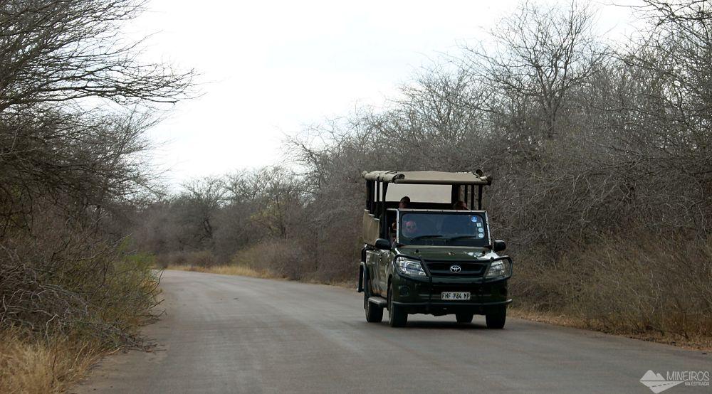 open safari carro aberto kruger