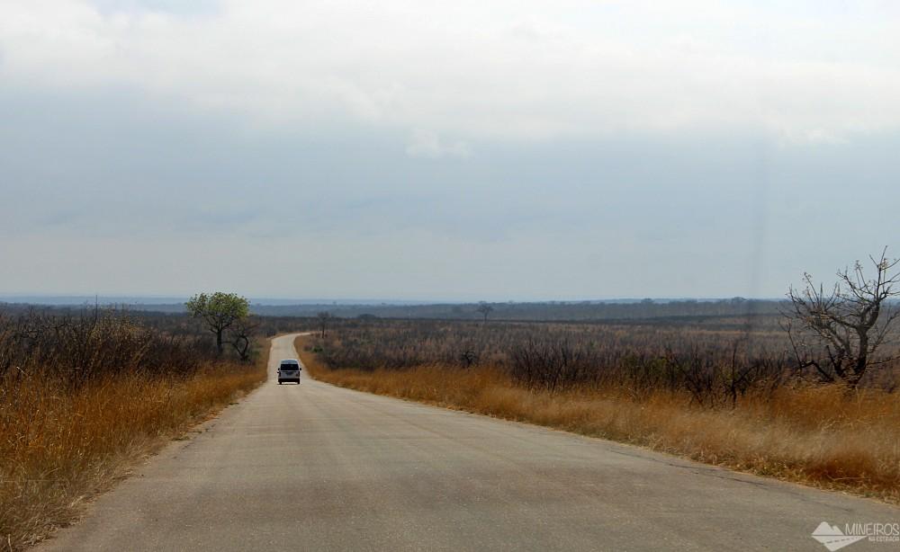estrada pavimentada safari no kruger