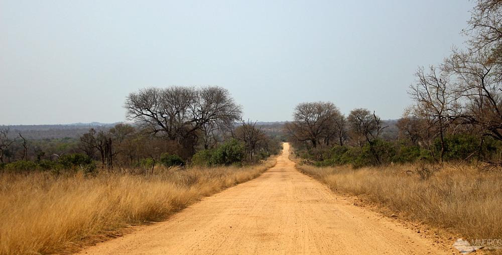 estrada de terra self safari kruger ark