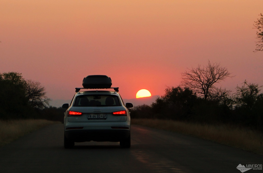 23 experiencias maravilhosas durante safari na africa