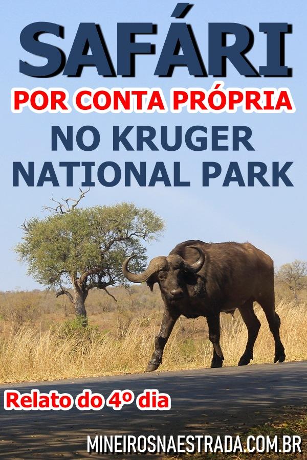 Como foi nosso 4º dia fazendo self safari na África do Sul. Por onde passamos, onde comemos e quais animais vimos no Kruger National Park. Veja por onde entramos, qual trajeto fizemos, onde comemos e quais animais vimos.