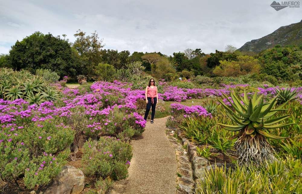 o que fazer em cape town jardim botanico
