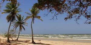 20 motivos para conhecer (e amar) a Ilha do Marajó
