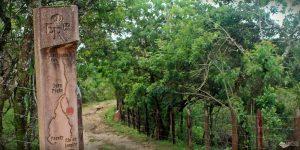 Caminho Novo da Estrada Real: de Petrópolis a Ouro Preto de carro comum